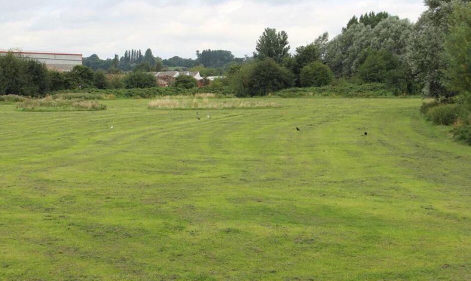River Soar scheme, Ellis Meadows before